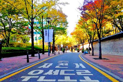 ทัวร์ เกาหลี Autumn in Your Heart 6 วัน 3 คืน โดยสายการบินไทย (TG)